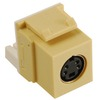 ICC Cabling Products IC107SVIIV Ivory S Video Keystone Jack