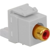 ICC IC107R8GWH White RCA/RGB to IDC Keystone Jack with Red Insert