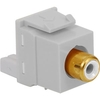 ICC IC107B8GWH White RCA/RGB to IDC Keystone Jack with White Insert
