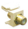 ICC IC107B5GAL Almond Gold Plated F Connector Keystone Jack