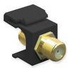 ICC IC107B5GBK Black Gold Plated F Connector Keystone Jack