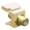ICC IC107B5GIV Ivory Gold Plated F Connector Keystone Jack